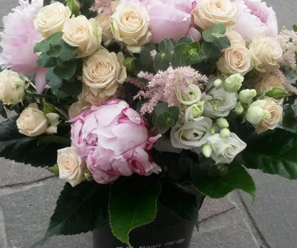 Pivonky a trsové ruže